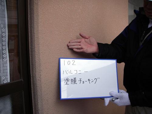 調査・診断例【アドバンス武久】3