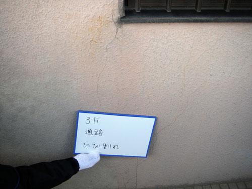 調査・診断例【アドバンス武久】2